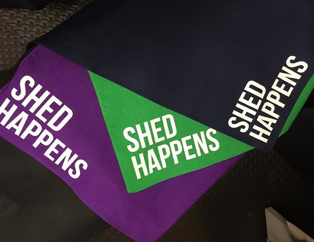 Shed Happens Dog Bandanas